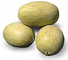 Семена арбуза KS 9944 F1 100 семян Kitano