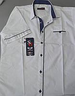Белая детская рубашка с коротким рукавом SENIOR BENSI, фото 1