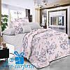 Полуторный постельный комплект из поплина АВРОРА (150*220)