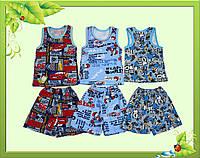 Комплект для мальчика с цветного интерлока : броцовка и шорты