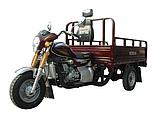 Трицикл грузовой Musstang MT200ZH-4V, фото 2