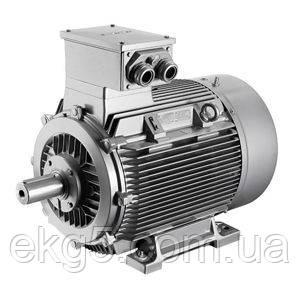 Электродвигатели общепромышленные 4АМ / 5АМУ