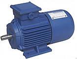 Электродвигатели общепромышленные 4АМ / 5АМУ, фото 2