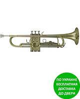 Труба Roy Benson TR-202G RB701075