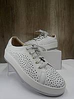 Летние женские кеды белого цвета Bandinelli 5832, фото 1