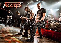Плакат Accept 04