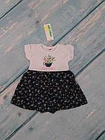 Платье боди для новорожденного (кулир), 74