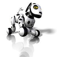 Собака-робот Zoomer(на англ языке) 619