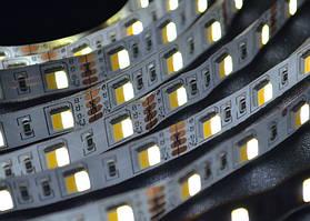 Світлодіодна стрічка Multi White SMD5050 60LED/m (IP20) CCT