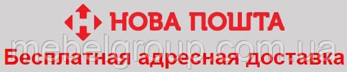 Бесплатная адресная доставка Новой Почтой, фото 2