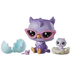 Littlest Pet ShopДомашние животные Совята Оона и Нона Оулер Oona Owler Nona Owler