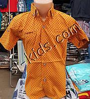 Стильная рубашка(шведка) для мальчика 6-12 лет(опт) (горчица) (пр. Турция)