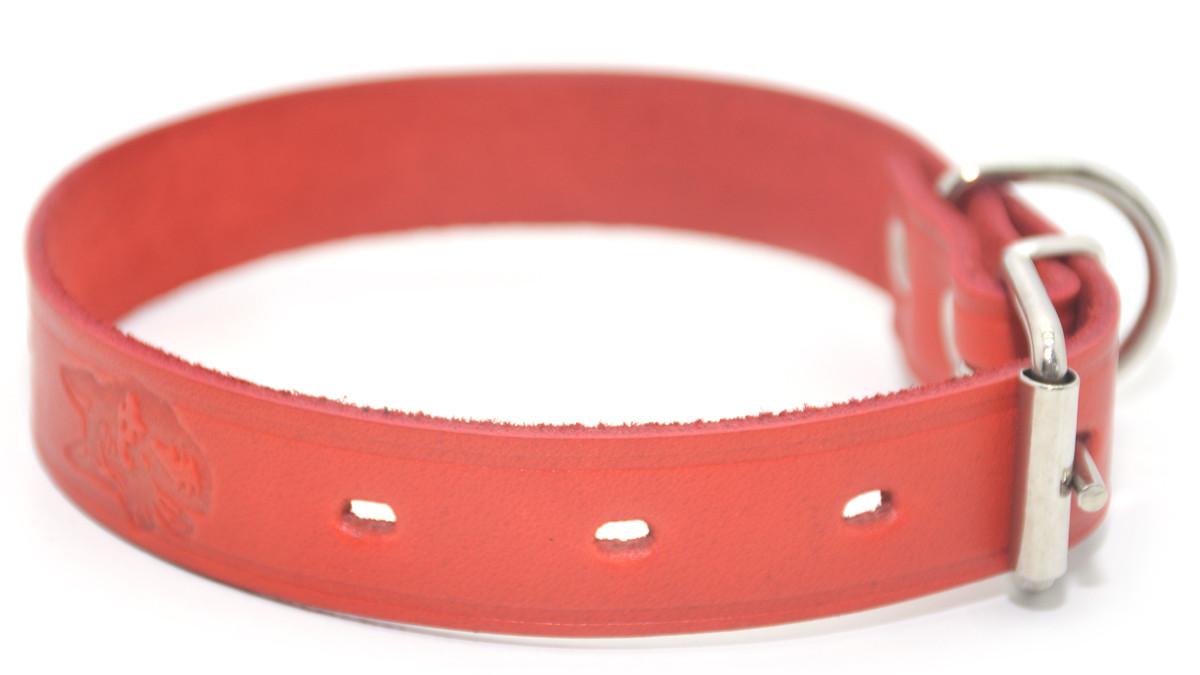 Ошейник для собак кожаный тисненный ОТ Лорд красный