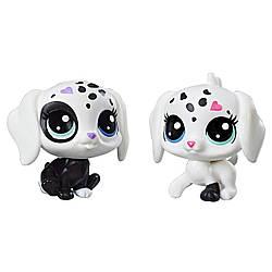 Littlest Pet ShopСобачки Маленький зоомагазинBlack & White Puppy BFFs