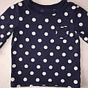 Синий реглан в горох с карманом на груди (Размер 4Т) Carter's (США), фото 3