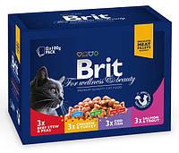 Влажный корм (Пауч) Brit Premium Cat pouch семейная тарелка 4 вкуса  1200 гр