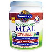 Garden of Life, Натуральная органическая еда, органическая замена шейка и блюда, ванильный пряный чай, 455 г (16 унций)