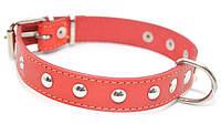 Ошейник для собак кожаный с украшением ОУ красный