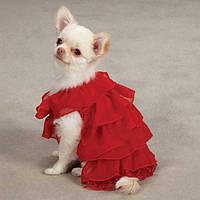 Платье Ruffle Dress