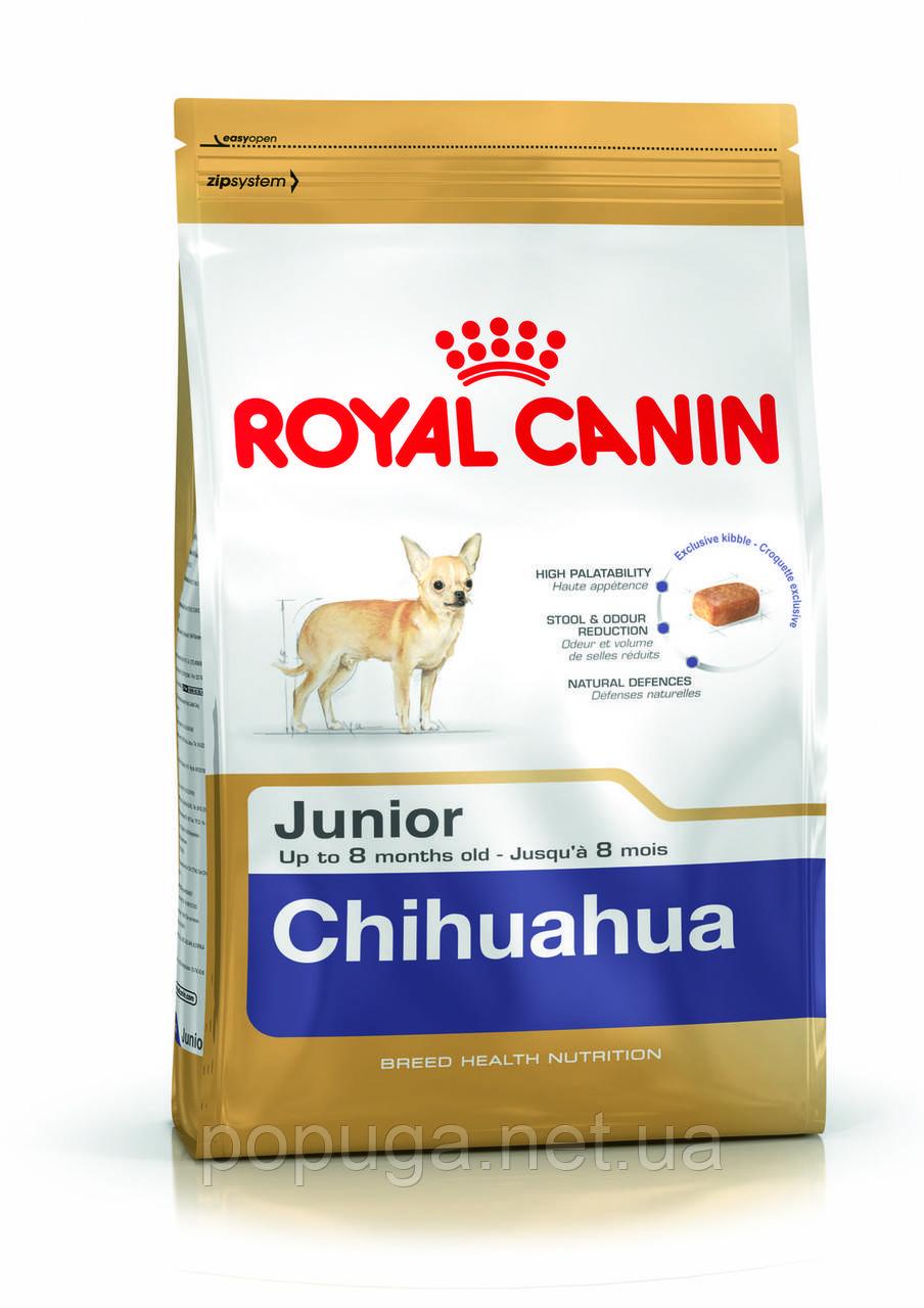 Royal Canin Chihuahua Junior корм для чихуахуа, 0,5 кг