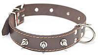 Ошейник для собак кожаный с шипами ОШ коричневый