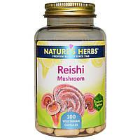 Nature's Herbs, Гриб рейши (трутовик лакированный), 100 вегетарианских капсул