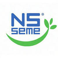 Семена подсолнечника НС Сумо - 2017