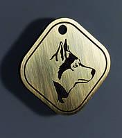 Адресники для охотничьих и служебных собак (ИЗГОТОВЛЕНИЕ ЗА 1 ЧАС В КИЕВЕ НА ОБОЛОНИ)