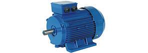 Электродвигатель АИР 250 M4 1500 об 90 кВт , фото 3
