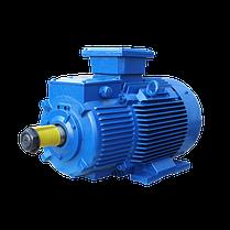 Крановый асинхронный электродвигатель  МТН 312-8 ( МТF 312-8) с фазным ротором 11 кВт 715 об, фото 2