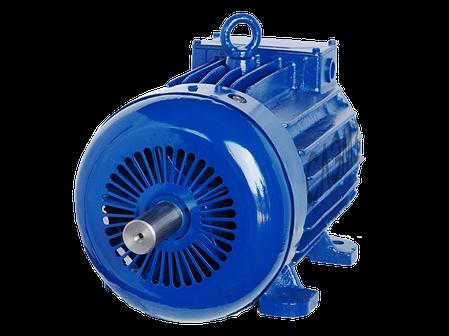 Крановый асинхронный электродвигатель 4МТКM 225 M8 (МТКH 511-8, MTKF 511-8) с кор.рот. 30 кВт 750 об., фото 2