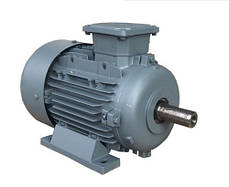 Крановый асинхронный электродвигатель 4МТКM 225 L6/20 с короткозамкнутым ротором 22* 4,5* кВт 900/235 об., фото 2
