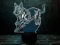 """Детский ночник - светильник """"Немецкая овчарка """" 3DTOYSLAMP, фото 1"""