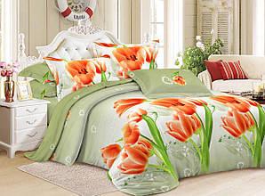Комплект постельного белья Krispol (8610), евроразмер, бязь