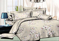 Двуспальный комплект постельного белья евро 200*220 хлопок  (9242) TM KRISPOL Украина