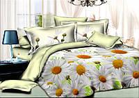 Двуспальный комплект постельного белья евро 200*220 хлопок  (9244) TM KRISPOL Украина