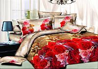 Двуспальный комплект постельного белья евро 200*220 хлопок  (9840) TM KRISPOL Украина