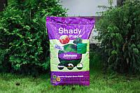Газонная трава теневая Johnsons Shady Place Hot ТЕНЕВАЯ - 10 кг