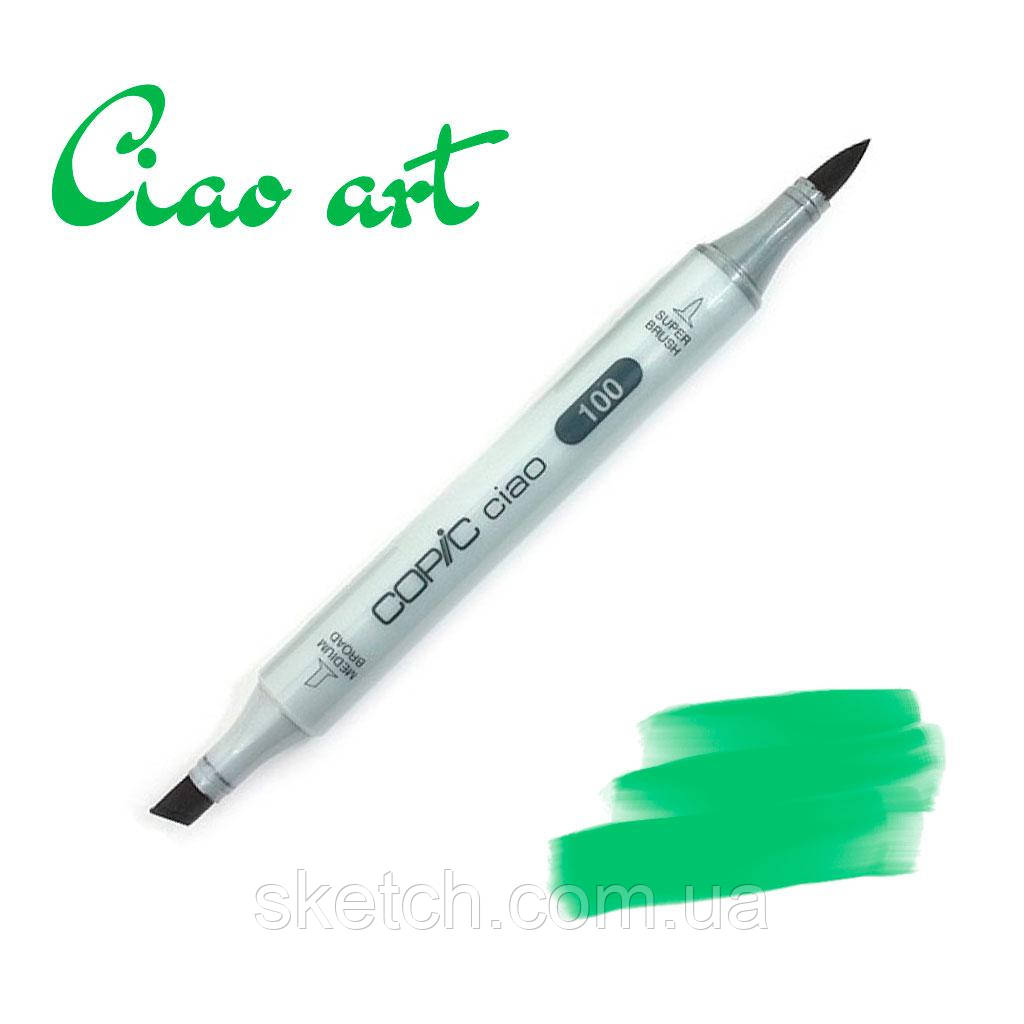 Copic маркер Ciao, #YG-09 Lettuce green