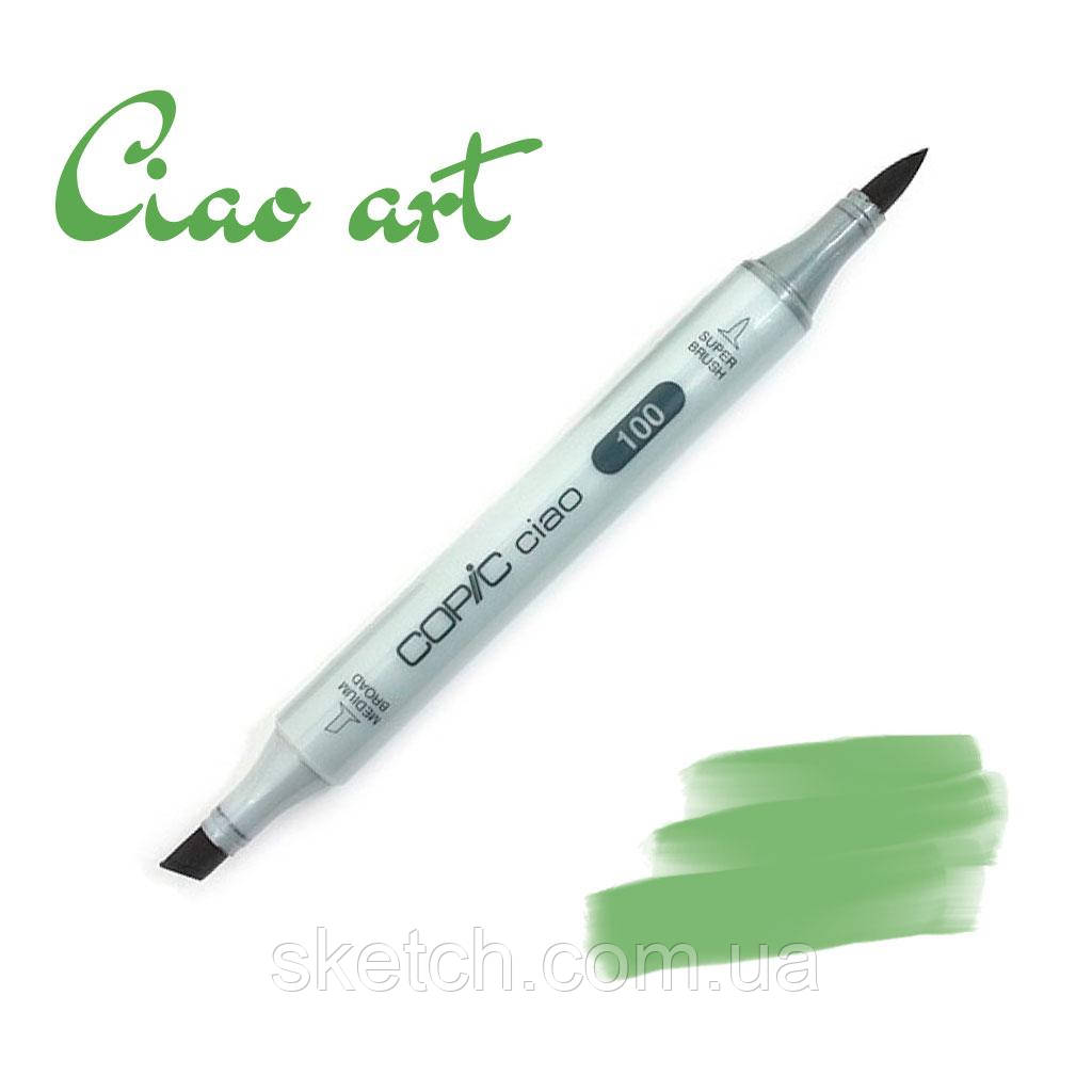 Copic маркер Ciao, #YG-17 Grass green