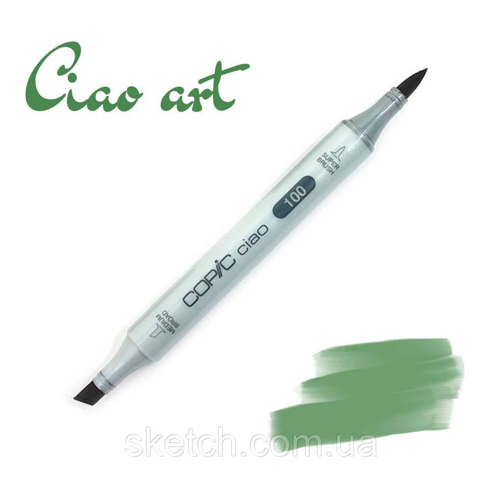 Copic маркер Ciao, #YG-67 Moss