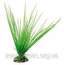 Растение для аквариума Ferplast (Ферпласт) ACORUS Акорус пластик BLU 9057, 20 см