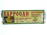 Варросан (10 полоск) Апи-Сан, Россия, фото 3