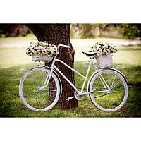 Ретро велосипед белый Аренда