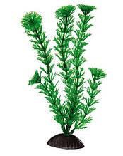 Растение для аквариума Ferplast (Ферпласт) Cabomba Кабомба пластик BLU 9060, 20 см