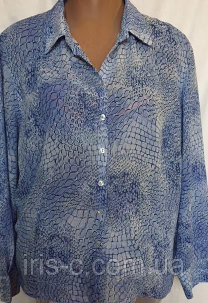 Женская блуза Debenhams из мягкого креп - шифона, большой размер 22(54/58)