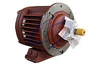 Электродвигатель подъёма тельфера, фото 1