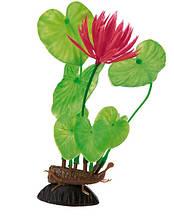 Растение для аквариума Ferplast (Ферпласт) Eichhornia Эйхорния пластик BLU 9066, 20 см