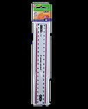 Лінійка 20см пластикова з кольоровою смужкою, фото 2