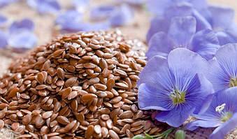 10 фактов о пользе семян льна. Как принимать этот супер-продукт?